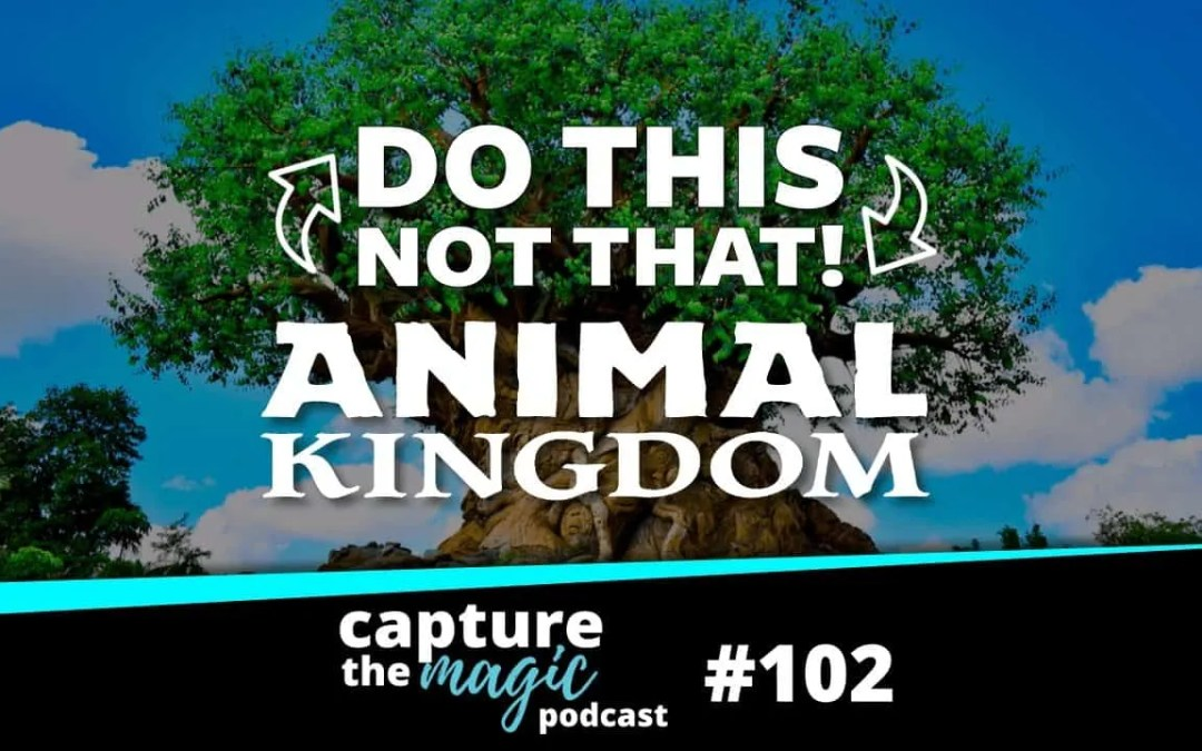 Ep 102: Do This, Not That – Animal Kingdom Edition