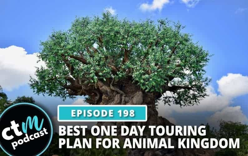 Ep 198: Best 1 Day Touring Plan for Animal Kingdom