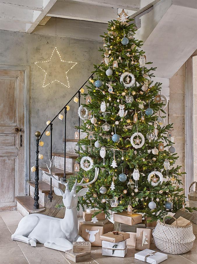 Comment bien choisir un sapin de Noël ?