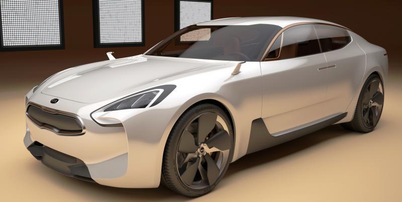 2011 Kia GT 13