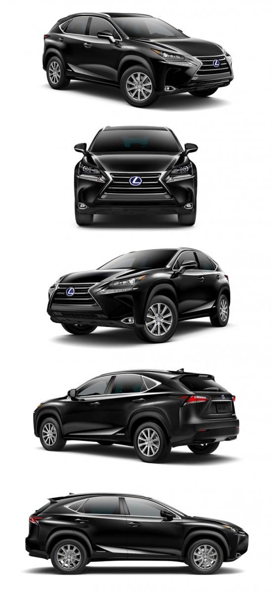 2015 Lexus NX300h Colors 31-tile_005