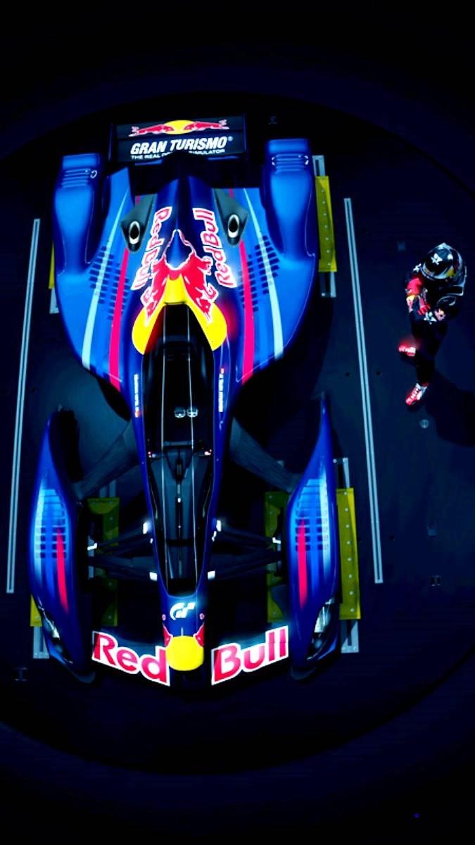 Red Bull X2010 10