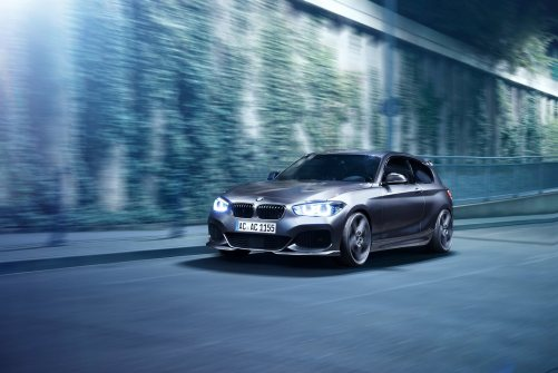 2016_150d_by_AC_Schnitzer_ (1)_300