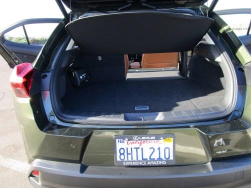 2019 Lexus UX 250h Hybrid (42)