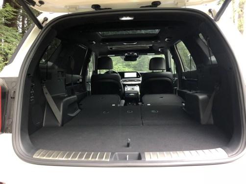 2020 Hyundai Palisade at Biltmore Estate (30)