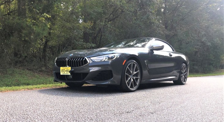 2019 BMW M850i Convertible Davit Grey Tom Burkart (48)