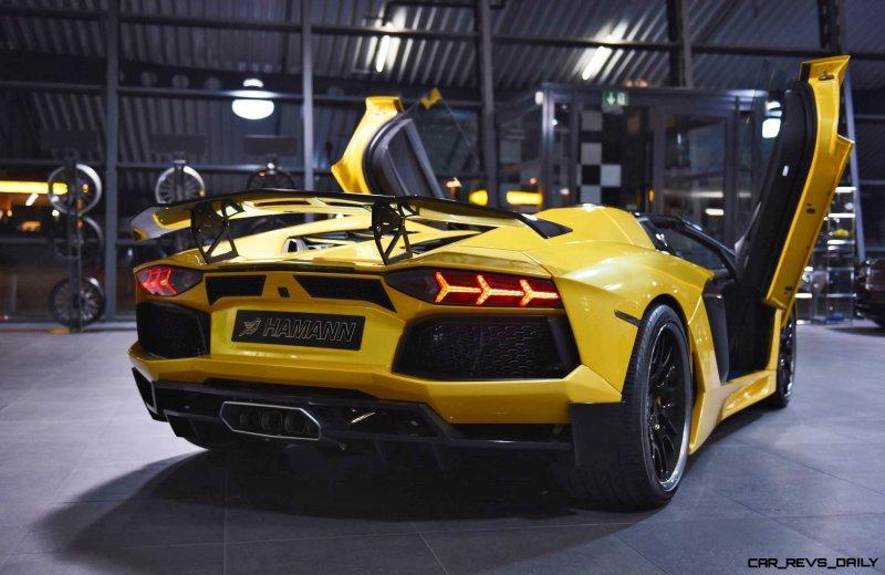 HAMANN Lamborghini Aventador Roadster 8