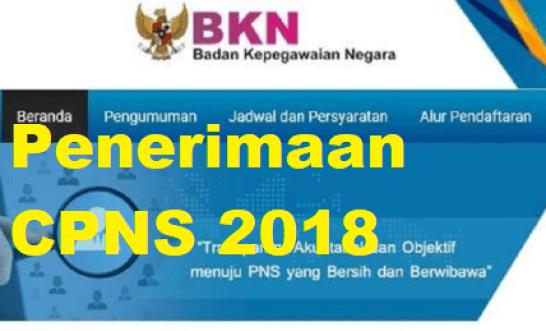 Syarat Pendaftaran CPNS 2018 Lulusan Sarjana
