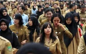 Pengumuman Hasil Seleksi Administrasi CPNS 2018 Provinsi Jawa Timur