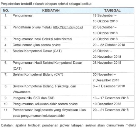 Pengumuman Hasil Seleksi CPNS ANRI 2018 PDF