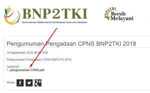 Pengumuman Hasil Tes Kompetensi Dasar SKD CPNS BNP2TKI 2018
