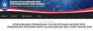 Hasil Seleksi Administrasi CPNS Kabupaten Bangka 2018