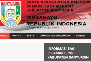 Hasil SKB CPNS Kabupaten Banyuasin 2018 Lulus Wawancara Psikotes