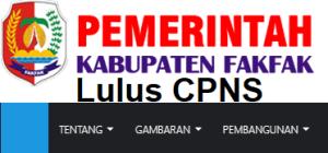 Pengumuman Hasil Tes SKD CPNS 2018 Kabupaten Fakfak
