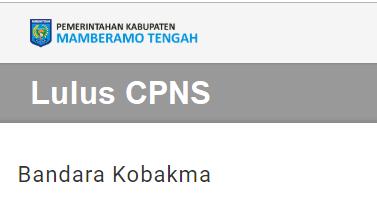 Pengumuman Hasil Tes Skd Cpns 2018 Kabupaten Mamberamo Tengah