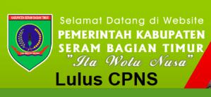Pengumuman Hasil Tes SKD CPNS 2018 Kabupaten Seram Bagian Timur