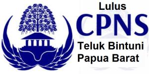 Pengumuman Hasil Tes SKD CPNS 2018 Kabupaten Teluk Bintuni