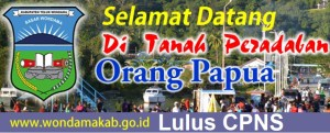 Pengumuman Hasil Tes SKD CPNS 2018 Kabupaten Teluk Wondama
