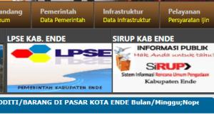Pengumuman Hasil Tes SKD CPNS Kabupaten Ende 2018