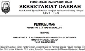 Pengumuman Hasil Tes SKD CPNS Kabupaten Kaur 2018