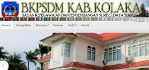 Pengumuman Hasil Tes CAT SKD CPNS Kabupaten Kolaka 2018