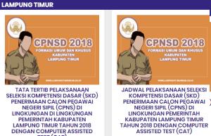 Pengumuman Hasil Tes SKD CPNS Kabupaten Lampung Timur 2018