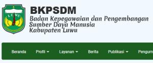 Pengumuman Hasil Tes CAT SKD CPNS Kabupaten Luwu 2018