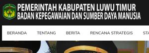 Pengumuman Hasil Tes CAT SKD CPNS Kabupaten Luwu Timur 2018