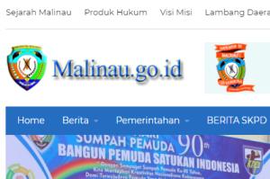 Pengumuman Hasil Tes CAT SKD CPNS Kabupaten Malinau 2018