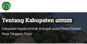 Pengumuman Hasil Tes SKD CPNS Kabupaten Nagekeo 2018