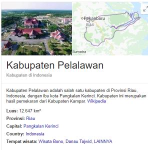 Pengumuman Hasil Tes SKD CPNS Kabupaten Pelalawan 2018