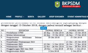 Pengumuman Hasil Tes SKD CPNS Kabupaten Sanggau 2018