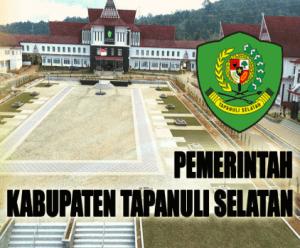 Pengumuman Hasil Tes SKD CPNS Kabupaten Tapanuli Selatan 2018