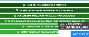 Pengumuman Hasil Tes SKD CPNS Kabupaten Bangkalan 2018