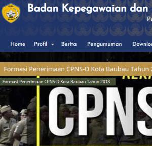 Pengumuman Hasil Tes CAT SKD CPNS Kota Baubau 2018