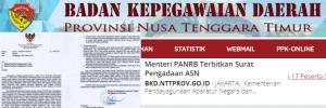 Pendaftaran CPNS NTT 2019