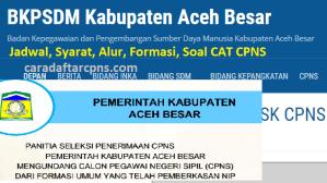 Pengumuman Hasil SKD SKB CPNS Kab Aceh 2019 2020
