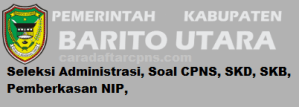 CPNS 2019 Kab Barito