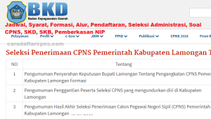 Pengumuman Hasil SKB CPNS Kabupaten Lamongan Formasi 2019