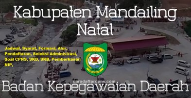 Pengumuman Hasil SKD CPNS KABUPATEN MANDAILING NATAL 2021