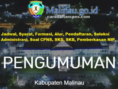 Pengumuman CPNS Kabupaten Malinau 2021 Lulusan SMA SMK D3 S1 S2