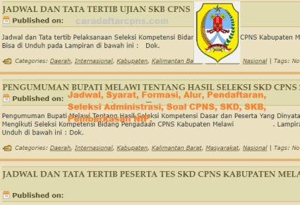 Pengumuman CPNS Kabupaten Melawi 2021 Lulusan SMA SMK D3 S1 S2