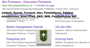 Pengumuman Hasil SKB CPNS Kabupaten Pelalawan Formasi 2019