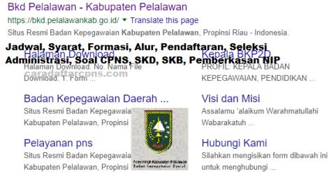 Pengumuman CPNS Kabupaten Pelalawan 2021 Lulusan SMA SMK D3 S1 S2