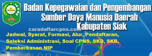 Jadwal SKB CPNS Kabupaten Siak 2019 2020