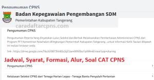 Pengumuman Hasil SKB CPNS Kabupaten Tangerang Formasi 2019