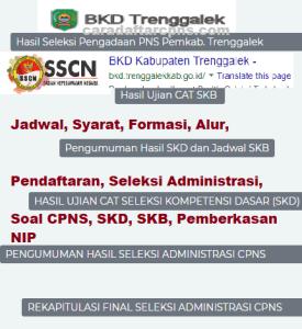 Pengumuman Hasil SKB CPNS Kabupaten Trenggalek Formasi 2019