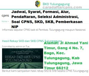 Pengumuman Hasil SKB CPNS Kabupaten Tulungagung Formasi 2019