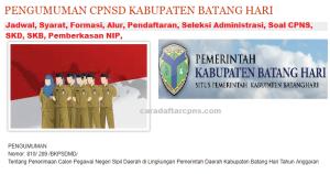 Pengumuman CPNS Kabupaten Batanghari 2021 Lulusan SMA SMK D3 S1 S2