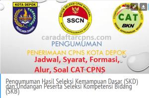 Pengumuman Hasil SKB CPNS Pemkot Depok Formasi 2019